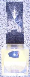 061026イス針.JPG