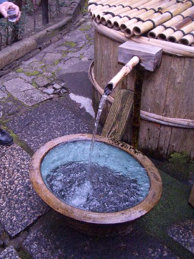 070228桃の井.JPG