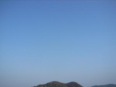 090407津田山.JPG