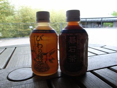 090506茶.JPG