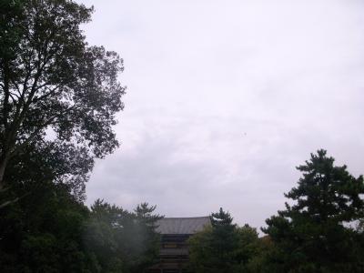 091001-0.JPG
